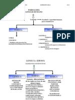 Exp-oral-ConceptosBásicos (1)