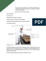 Bpm y Lay Out de La Manufactura de Las Frutas Exoticas by MinOz Ft Mica
