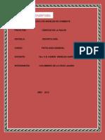 Rsu Transparencia de Las Organizaciones Patologia