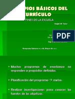 PRINCIPIOS BÁSICOS DEL CURRÍCULO (1)