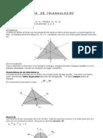 GUIA de TRIANGULOS Elementos Secundarios-2