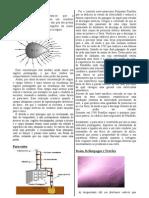 poder_das_pontas.pdf