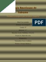 Pagina Wb