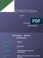 Blood Protozoa
