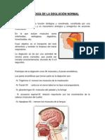 FISIOLOGÍA DE LA DEGLUCIÓN (diapos orto)