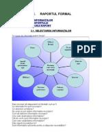 Curs 4.1 -Raportul Formal