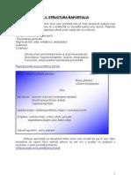 Curs 4.2 - Structura Raportului