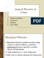 Lecture 7 Biological Theory