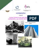Carlos Ricardo Llopiz - Caracteristicas Mecanicas Del Hormigon y Del Acero de Refuerzo
