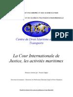 La Cour Internationale de Justice, les activités maritimes