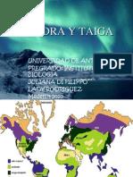 tundraytaiga-110213143333-phpapp02