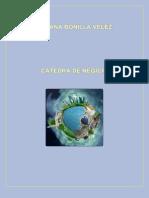 Ciencia y Tecnología de Cátedra de Negocio Internacionales