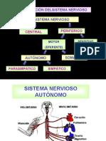 Fisiología del Sistema Nervioso Autónomo