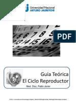 1- El Ciclo Reproductor Femenino