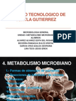 unidad 4 Metabolismo microbiano.pptx