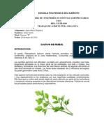 Pere Jil