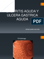 patologc3adas-estomago-ya.ppt
