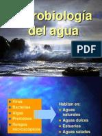Agua 2012