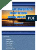 DAÑO DE FORMACION 1.pdf