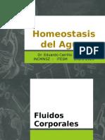 Homeostasis Del Agua