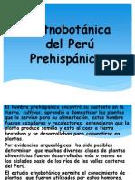 2 Diapos de Etnobotanica Del Peru Prehispanico