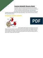 Pengobatan Anemia Aplastik Secara Alami