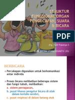 L1-Struktur Fungsional Organ Pengucapan, Suara & Bicara