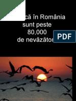 Noi vedem! Ei... Ajutati nevazatorii din Romania
