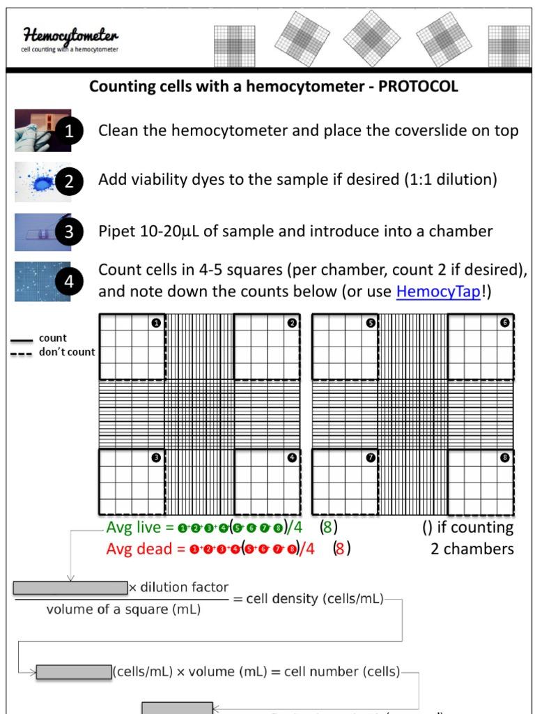Hemocytometer Protocol