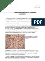 Imunomorfoligie _Vimentina