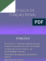 Biofísica e a função renal.