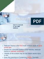 Testicular Trauma