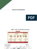 01-DNA structure.pdf