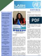 ONU Flash Madagascar - Numero Spécial - 24 Octobre 2012