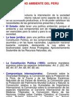 02-MEDIO_AMBIENTE_PERUANO.ppt