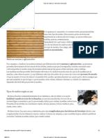 Tipos de Madera _ Tutoriales y Manuales