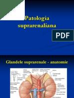 Patologia Suprarenaliana Feb 2008