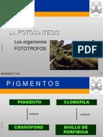 fotosintesis-1