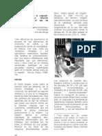 EFI_informe Econmica y Poltica Final