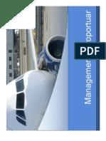 Curs Organizarea Aeroporturilor c5