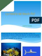 Powerpoint (Tiburon)
