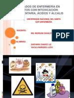 CUIDADOS DE ENFERMERÍA EN ADULTOS CON INTOXICACIÓN ALIMENTARIA