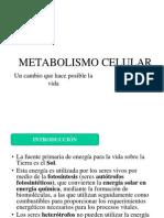 Metabolismo Celular.ppt. Parte i