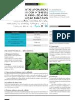 PAM_2_Isabel_Mourao_Jun2012.pdf