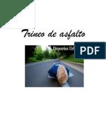 Trineo de asfalto1.pdf