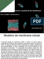 Biofisica4 Fis[1]