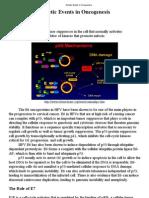 Genetic Events in Oncogenesis