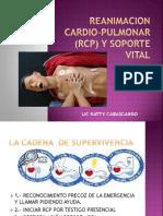 Reanimacion Cardio-pulmonar (Rcp) y Soporte Vital