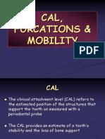 CAL, Furcation & Mobility