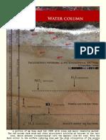 Redfish-water column
